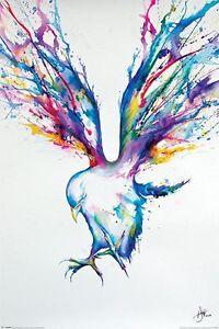 Marc-Allante-Achilles-POSTER-61x91cm-NEW-flying-bird-artist-artwork-art