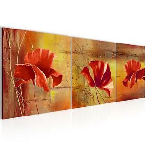 Bilder Mohnblume Blumen Bilder Leinwandbild auf Leinwand