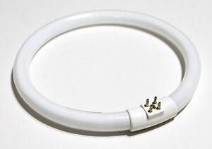 circular fluorescent tube bulb 12w t4 for desk lamp vtlamp10 ebay. Black Bedroom Furniture Sets. Home Design Ideas