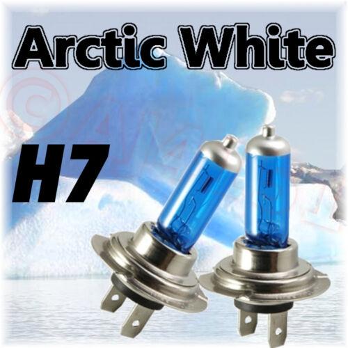CITROEN C5 2001-04 XENON Artico Bianco Lampadine H7