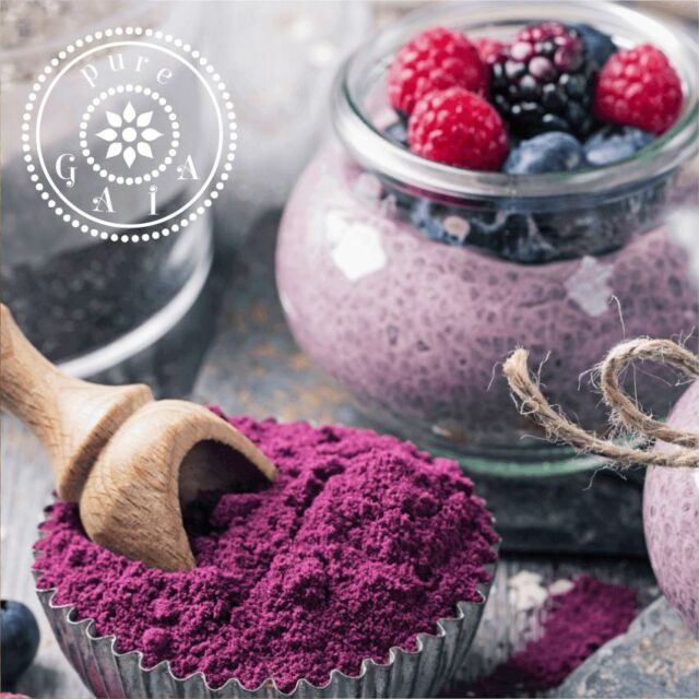 Blueberry Powder Organic (Vaccinium angustifolium) PREMIUM QUALITY - superfood