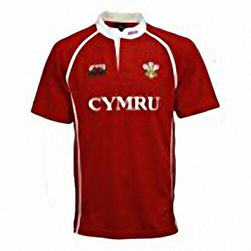 Homme Dlyan Cooldry Welsh Cymru Respirant Rugby T-shirt Homme Taille S-3XL...