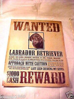 Reliable Retriever Lab Labrador Certified Sidekick Pure Golden Tin Metal Sign