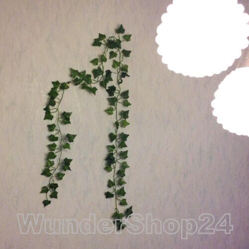 künstliche Seidenpflanze Begonie Efeu Efeubusch Efeugirlande Efeuranke 200cm n2