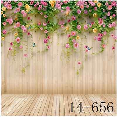 Scenery Vinyl photography background Studio photo prop backdrop 10x10ft 14-656