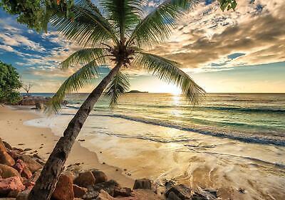 Vlies Fototapete XXL Tapete Poster 006156FW Sonnenuntergang in Tropen Strand und