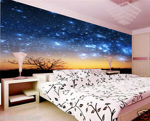Prepasted Wallpaper Mural Photo Wall Covering Decor Sky Night B467