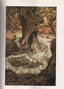 Arthur-Rackham-Print-A-Midsummer-Night-039-s-Dream