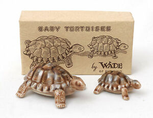 Wade-Tortoise-Family-Baby-Tortoises-In-Original-Box