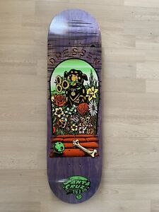 santa cruz skateboard Dressen