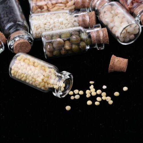 9pcs Getrocknete Lebensmittel Glas Jar Foods Set für 1//12 Puppenhaus Küche