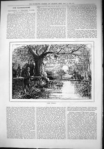 Original-Old-Antique-Print-1879-Cray-Fishing-River-Scene-Man-Fish-Angling-Sport