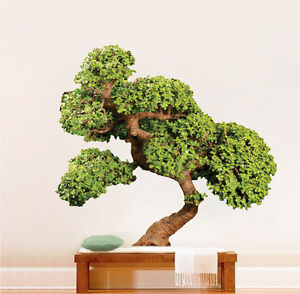 Image Is Loading Bonsai Tree Wall Decal Mural Plant Vinyl