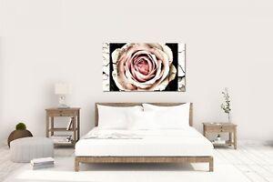 Wandtattoo-Wandsticker-Aufkleber-Vintage-Rose-Groesse-120-x-70-cm