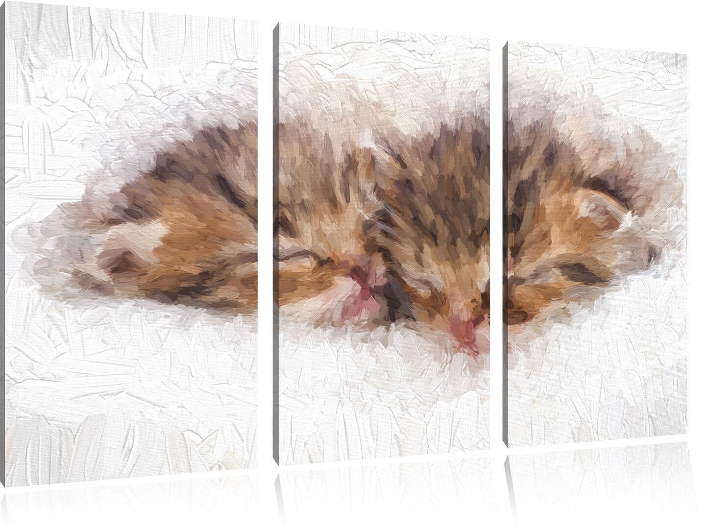 Dormiente Gattini Pennello Effetto 3-Teiler Quadro su Tel Decorazione Parete
