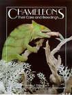 Chameleons: Their Care and Breeding by Linda J. Davison (Paperback, 1997)