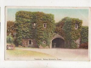 Tavistock-Betsey-Grimbals-Tower-Devon-1906-Postcard-512b