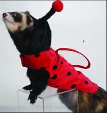 Marshall Ferret Toy Dog Fashion Lady Bug Shirt Jacket Costume - Ladybug