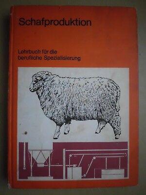 Ddr Lehrbuch Für Berufliche Spezialisierung Fachbuch schäfer Klug Schafproduktion