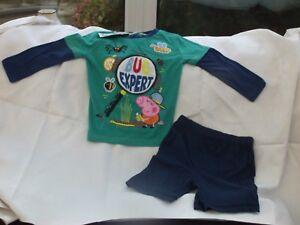 Details About Geroge Asda Peppa Pig Pyjama Set