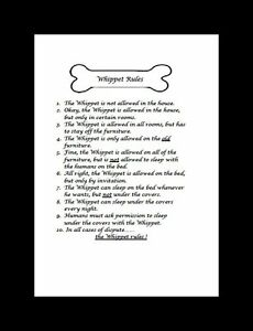 Whippet-034-Rules-034-Dog-Art-Print-Matted