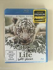 BluRay Circle of Life - Baby Planet