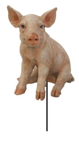 Sitzen Schwein Vivid Arts Pflanze Pal Garten
