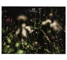 CD Norwegen Anneli Drecker, Rocks & Straws, 2015, NEU