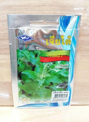 1 Bag,1 g,2,400 seeds Thai Holy Basil Seed Herb Vegetable Seeds Approx Fragrant