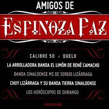 Amigos De Espinoza Paz, Various Artists, New