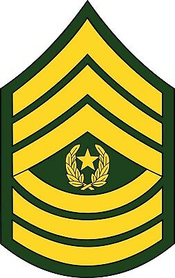 CSM United States Army Command Sergeant Major Black Patch /& With Hat optional