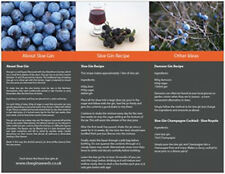Damson Brook Sloe Gin Guide Recipe Leaflet To Make Your Own Home Made Liqueurs