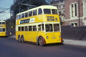 PHOTO-Newcastle-Transport-Trolleybus-612-NBB612-in-1963-on-route-36