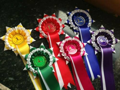 20 sets of 1st to 6th 3 tier star point placing rosettes