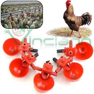 Kit-5-pezzi-abbeveratoio-acqua-distributore-allevamento-pollame-polli-galline