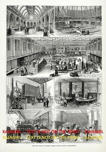 Wine Sir Walter Gilbey's Establishment Bring Wine to Masses, 1870s Antique Print