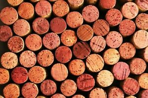 Lot of 50 Real//Natural Used Wine Corks NO Plastic or Champagne arts /& crafts