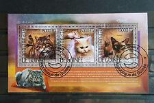 Katzen 38 cats Chats Guinee Tiere animals pets Fauna Block KB sheet gestempelt