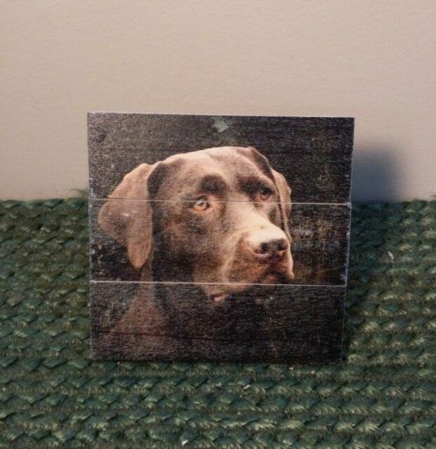 Chocolate Labrador Retriever Wood Welcome Outdoor Sign