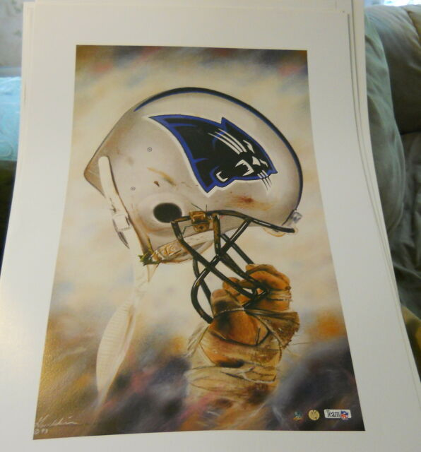 Carolina Panthers Vintage NFL Football 20x30 Helmet print ...