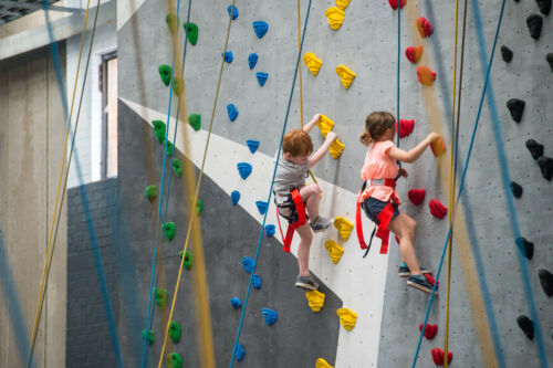 20x Textured Climbing Rock Wall Stone Holds Hand Feet Kids Gift Outdoor Play kid