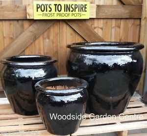 Extra Large Pots And Large Black Glazed Pot Tree Garden