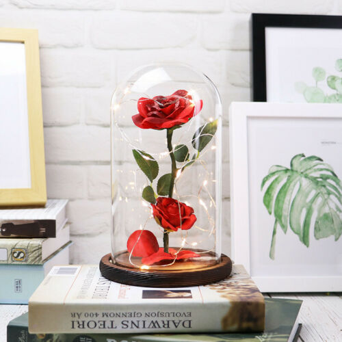 4PC Beauty /& The Beast Enchanted Rose Lamp Glass Dome Valentine LED Lighted Gift