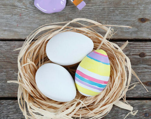12 White Hollow One Piece Matt Plastic Easter Eggs for CraftsEggs to Decorate