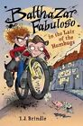 Balthazar Fabuloso in the Lair of the Humbugs by I J Brindle (Hardback, 2016)