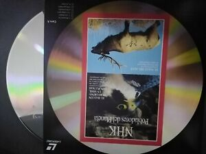 Nhk-Settlers-Of-the-Earth-Laser-Disc-The-Falcons-Hawks-Y-the-Moose