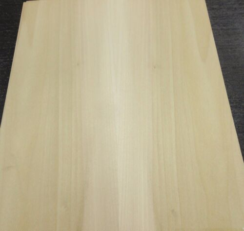 "Poplar wood veneer sample sheet 8.5/"" x 11/"" with paper backing 1//40th/"" thickness"