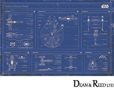 Star Wars -Rebel Alliance Fleet Blueprint Maxi Poster 61cm x 91.5cm PP33341-555