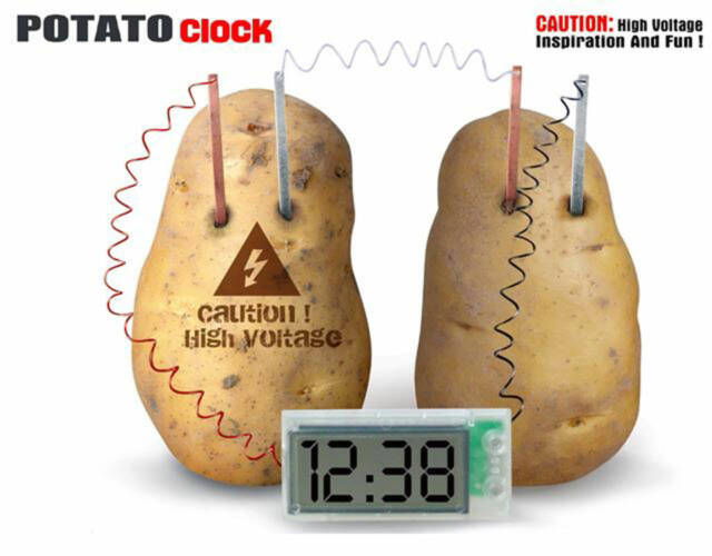 Potato Clock Green Science Project Experiment Kit Kids Diy Homeschool Curriculum