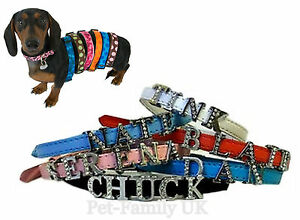 Personalized dog puppy cat pet collar XS S M 8 MM FREE letters ( up ... 82b5e33bdde8
